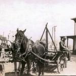 Horse&Trailer