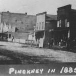 Pinckney 1885BW