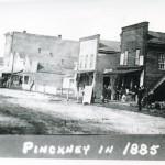 Pinckney1885