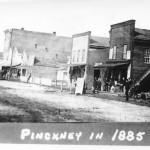 Pinckney1885BW